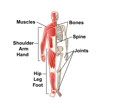 Rolfing for bone and muscle pain